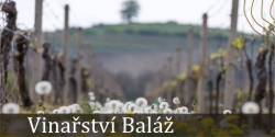 Vinařství Baláž