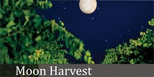 Dominic Wines Moon Harvest