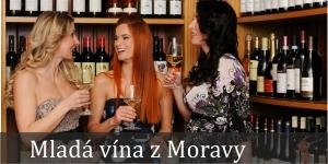 Mladá a Svatomartinská vína z jižní Moravy