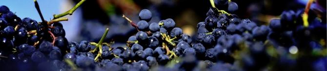 Tabulka ročníků vína