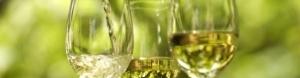 Zelená vína - Vinho Verde