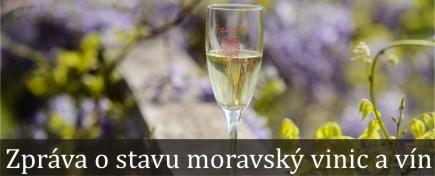 Zpráva o stavu moravských vín 2015 a vinic 2016