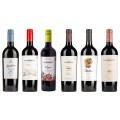 Sada 6 vín Malbec z Argentiny
