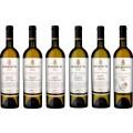 Sada 6 vín - Mikros vín vlašáky
