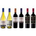 Sada 6 vín Errazuriz