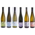Sada 6 vín Nového vinařství