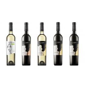 Sada 5 vín - vinařství Na Soutoku