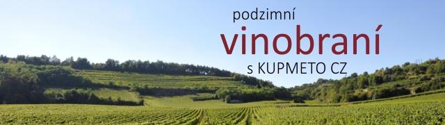 Podzimní vinobraní
