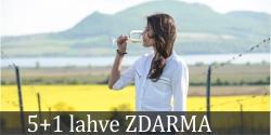 Moravská vína 5+1 zdarma