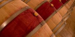Burgundsko vína