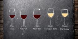 Jakou skleničku použít na víno