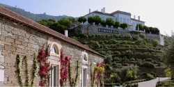 Rozdíl mezi portským a portugalským vínem