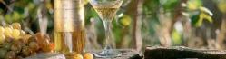 Vína podle přívlastku