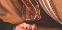 Velká vína Itálie