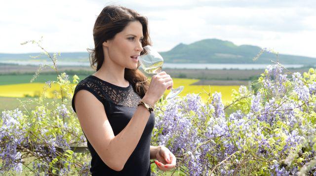 Moravská oceněná vína