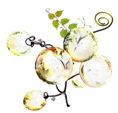 Jaillance - francouzská šumivá vína