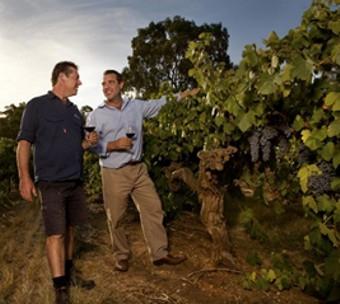Langmeil australské vinařství