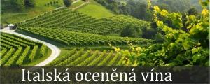 Italská oceněná vína