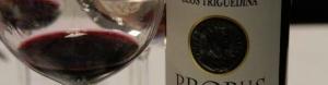 Černé víno