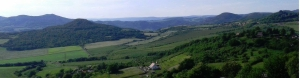 Česká vinařská oblast