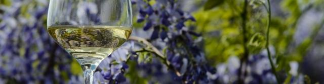 Rozdělení vína podle přívlastku